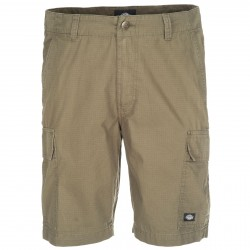 Short Dickies New York Kaki