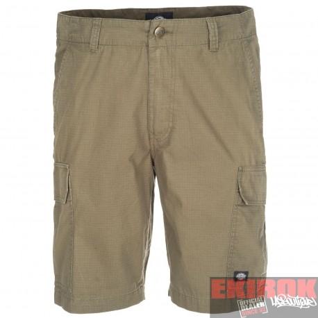 Short Dickies New York Kaki